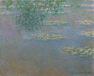 《睡蓮》 1903年 油彩・カンヴァス