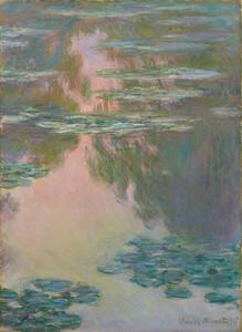 《睡蓮の池》 1907年 油彩・カンヴァス